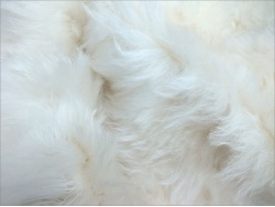 Schulte 65mm Ivory Long Mohair