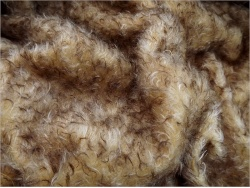 Schulte Sandy & Brown dense tipped 23mm Mohair - 96