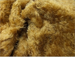 Schulte Yellow Gold 27mm Mohair
