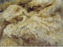 Schulte Light Gold on Brown 40mm Mohair 15