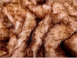 Schulte Cream Copper Tip 40mm Mohair - 76
