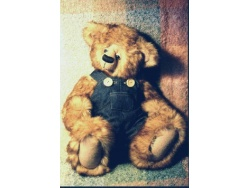 Sebastian 42cm Faux Fur Bear Pattern