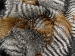 bronze_stripe_2