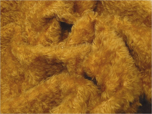 Juno Yellow Gold 18mm Mohair